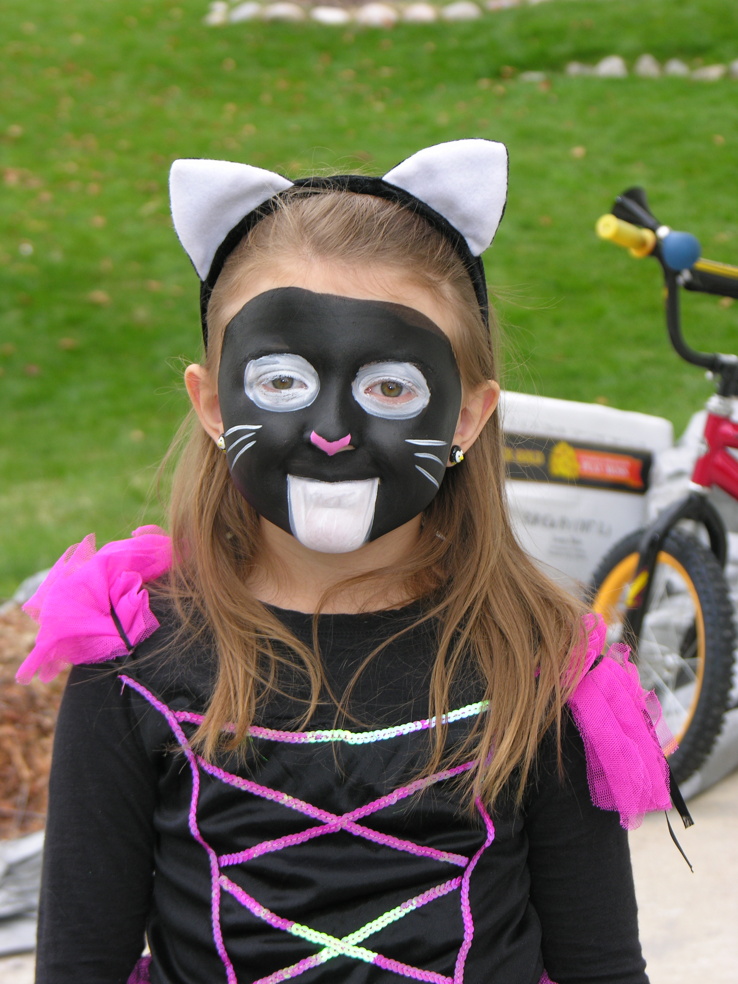Black And White Cat Face Paint Pictures to Pin on ...